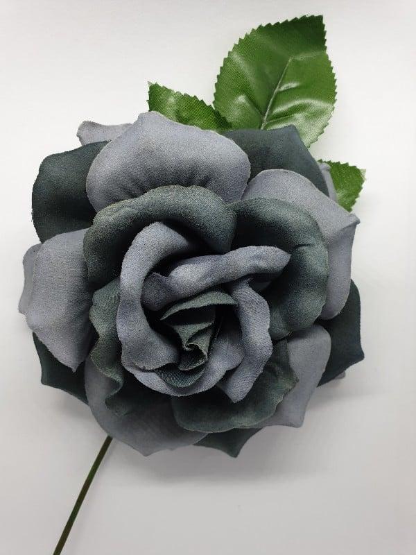 Rosa flamenca Victoria